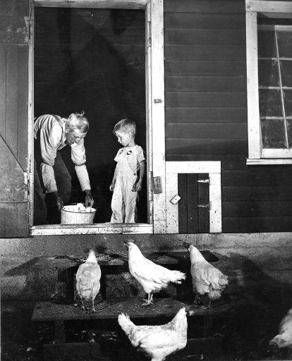 16-G-128-2-3: Meeker Co., Minnesota. 7-15-41. G.B. Carpenter and Grandson, Frankie, leaving henhouse. Fred J. Marshal Farm.